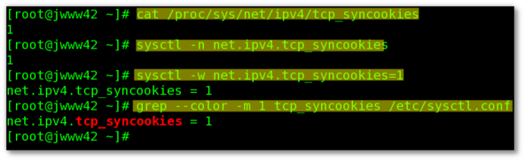 Linux: Turn On TCP SYN Cookie Protection
