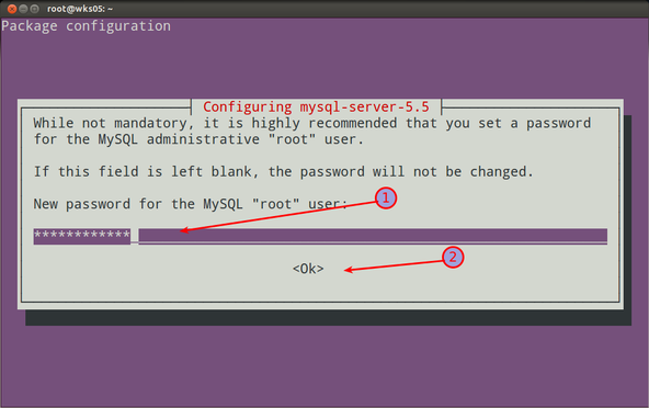 Fig.01: Set a password for the mysql admin root user