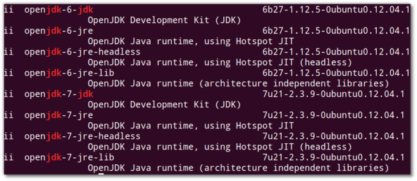 Fig.01: Listing all installed jdk's on Ubuntu Linux