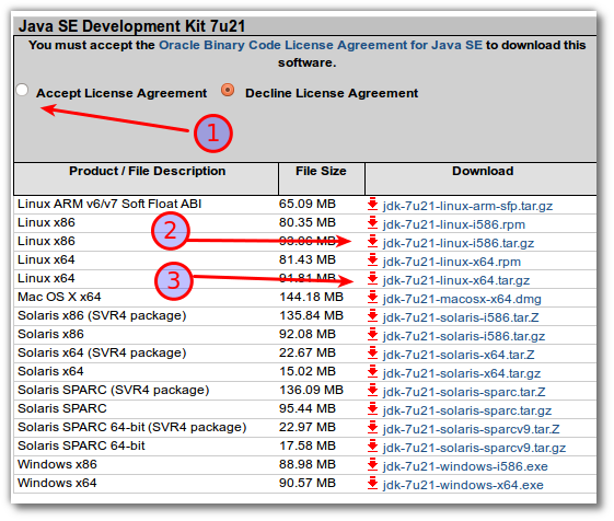 Fig.05: Accept Oracle license and download either 64 or 32 bit version in tar.gz format