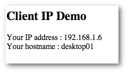 Fig.01 client-ip.php output