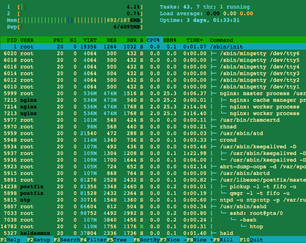 htop command displaying used and free ram along with other system info on Linux