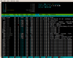 Fig.03: htop - Interactive Linux / UNIX process viewer