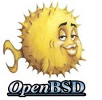 OpenBSD Change, Add or Display Default Gateway