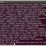 Fig,01: Install shutter using apt-get command