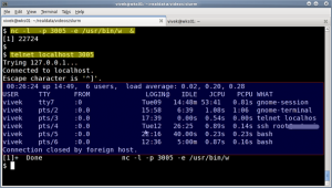 Fig.11: nc server and telnet client in action