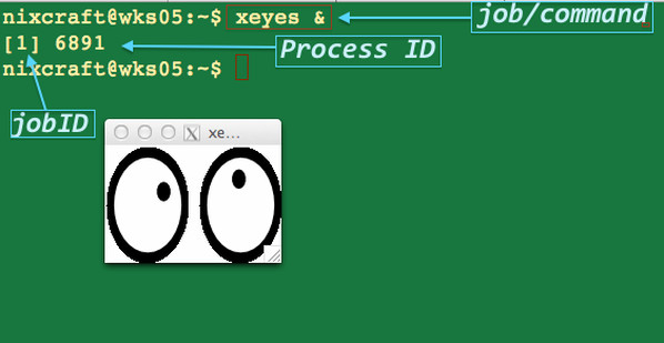 Fig.01: Runing the xeyes command in the background