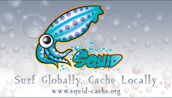 squid cache proxy server