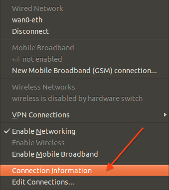 Fig. 04: Network Connection info option
