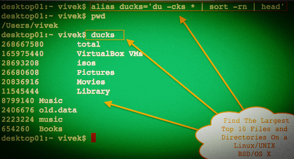 How Do I Find The Largest Top 10 Files and Directories On a Linux ...