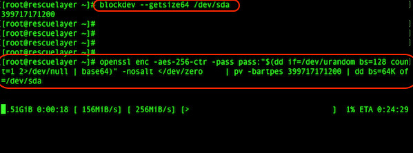 Fig.02: Use dd command with  randomized the drive/partition using a randomly-seeded OpenSSL AES cipher and pv command