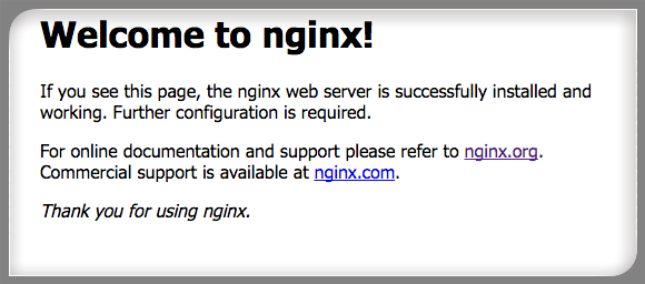 Fig.03: Nginx in action