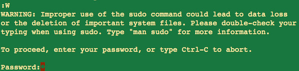 Fig.05: Sudo in action inside vim