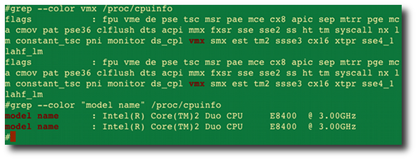 Fig.01: Linux check Intel VT - if my server can run full virtualization or not