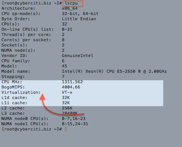 Fig.02: lscpu command on a Linux server to find out Virtualization support