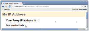 Fig.01: What is my ip address?
