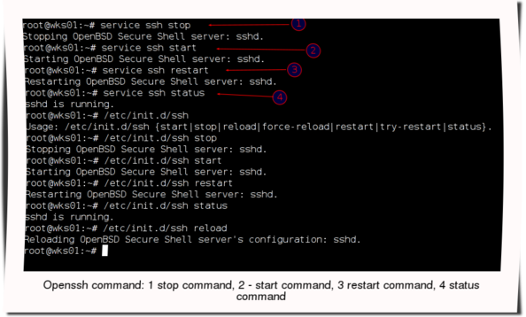Fig.01: OpenSSH under Debian Linux