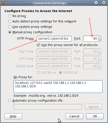 Fig.02: Firefox proxy settings