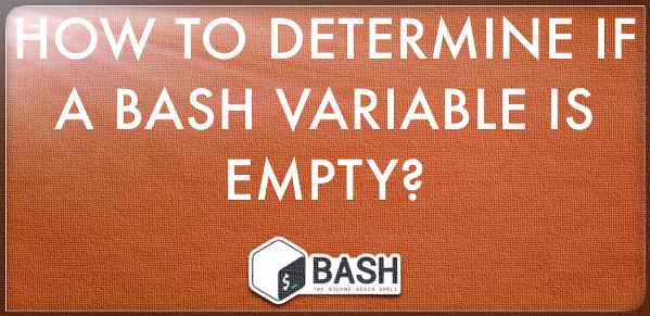 Fig.01: Bash scripting various way to determine if a variable is empty