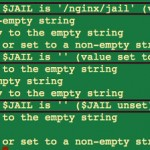 Bash Shell: Find Out If a Variable Is Empty Or Not