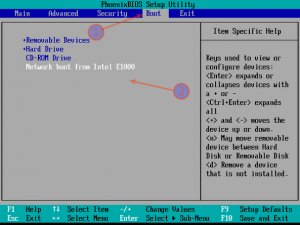 Fig.01: Sample pxeboot bios setting