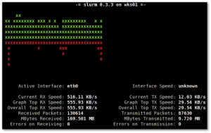 Fig.01: Linux monitor network interface traffic with slurm software