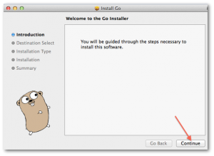 Golang installing on OS X using wizard