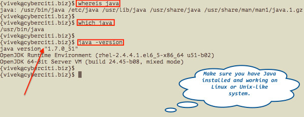 Fig. 01: Make sure java is installed on a Linux/Unix based system
