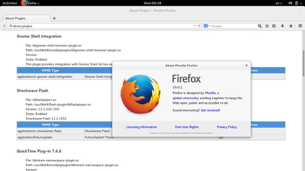 Fig.01: Fedora Linux Firefox With Adobe Flash Plugins Installed