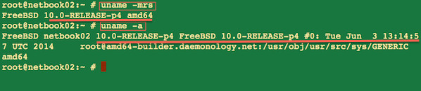 Fig. 01: Newly updated FreeBSD 10 server