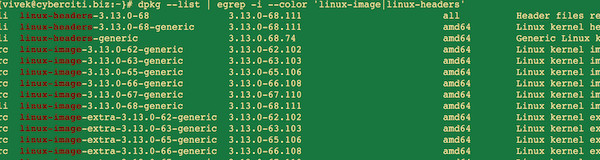 Fig.01: Check what kernel image(s) are installed on your system