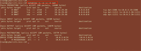 Fig.01: Linux viewing all iptables NAT, DNAT, MASQUERADE rules