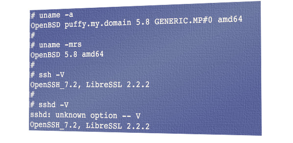 Fig.01: OpenSSH 7.2 running on my OpenBSD 7.2 server
