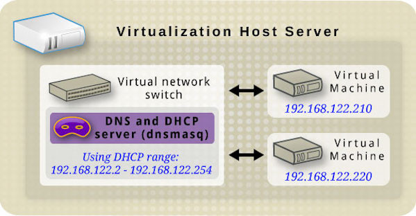 can switches assign ip addresses