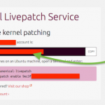 How to live patch Ubuntu Linux Kernel without rebooting the server