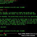 Linux kvm exit from a virsh console command