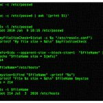 How to check the file size in Linux/Unix bash shell scripting