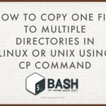 How to copy a single file to multiple directories in Linux or Unix
