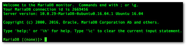 Fig.01: The MySQL/MariaDB shell