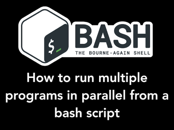 How to run multiple programs in parallel from a bash script in linux / unix?