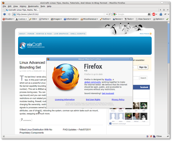 Firefox version 4.0 Running under Linux