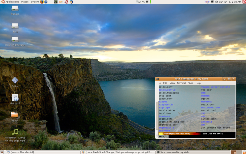 Linux desktop nice visual effect , like transparency, tinting etc