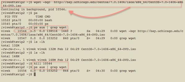 unix linux sa resume