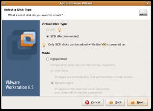 Fig.04: Vmware Wizard Disk